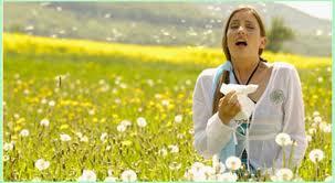 花粉过敏   –   Alergias, polen y alimentación