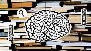 Gehirn und Sprache