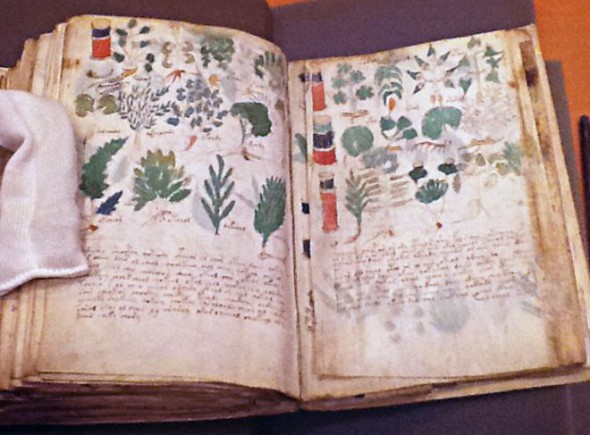 THE MYSTERY OF THE VOYNICH MANUSCRIPT