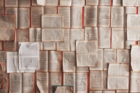 Leer historias crea patrones universales en el cerebro, según una investigación