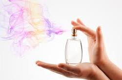 La mémoire olfactive