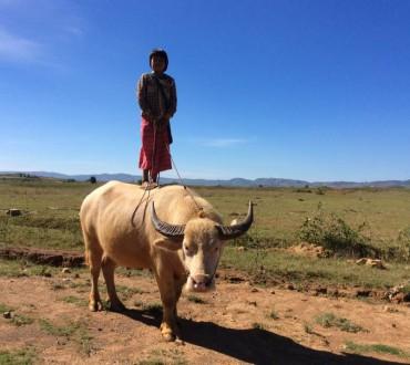 Myanmar. Should you go?