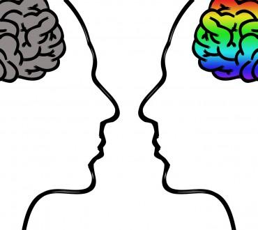 ¿De qué manera funciona nuestro cerebro? Seis libros para entender su actividad